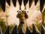 Аватар пользователя amulet80