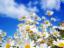 Аватар пользователя korostyva