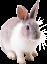 Аватар пользователя ingulya.firsova